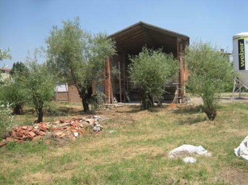 Fienile Rustico in Mattoni Imola