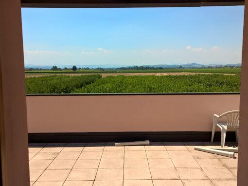 Villa con Giardino e piscina a Imola U4 – Ristrutturazione con Super Bonus 110%